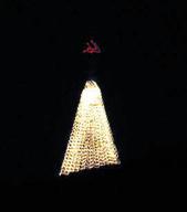 12-26-12 Christmas Tree